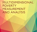 Multidimensional Poverty Measurement and Analysis book cover