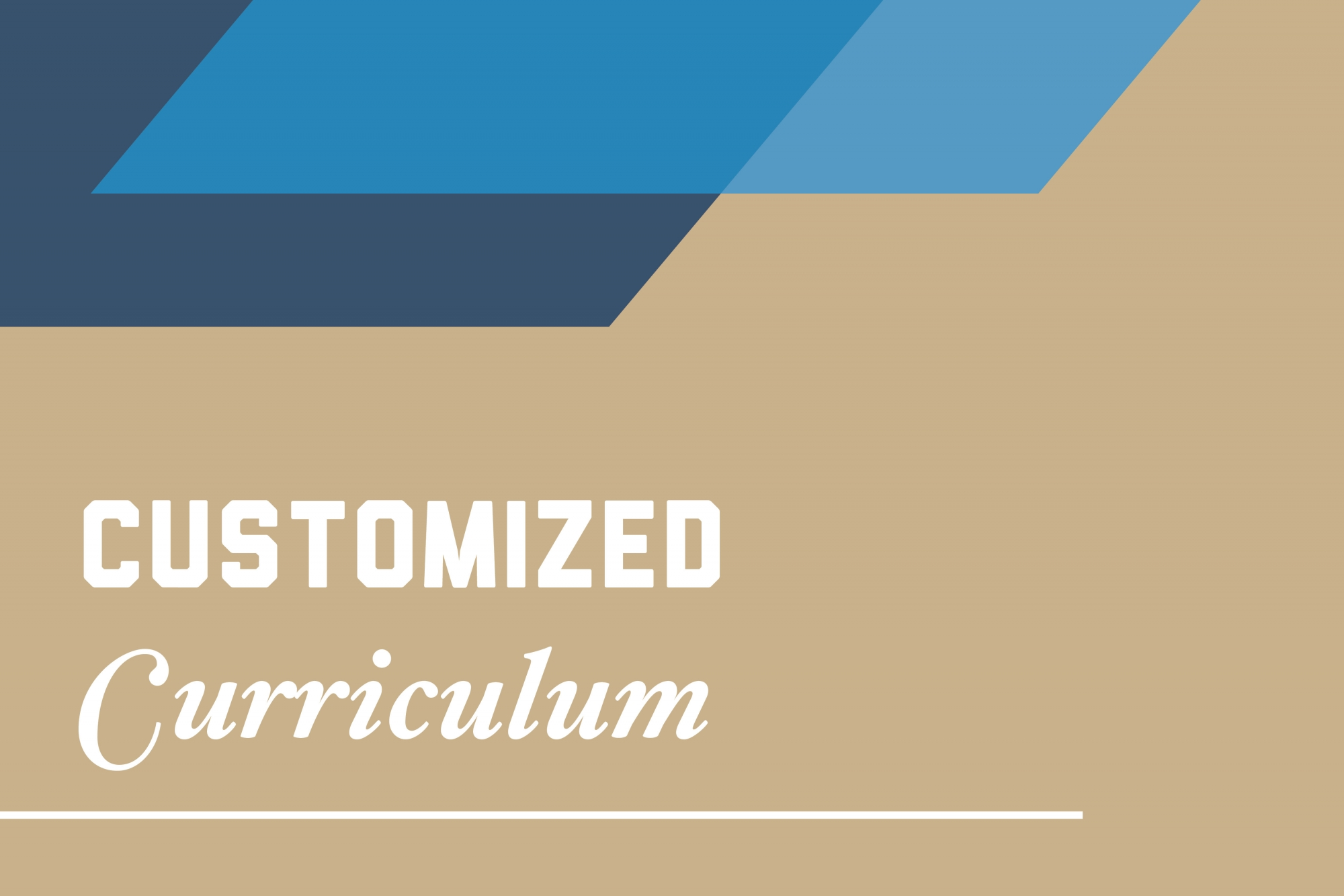 Graphic: Customized curriculum