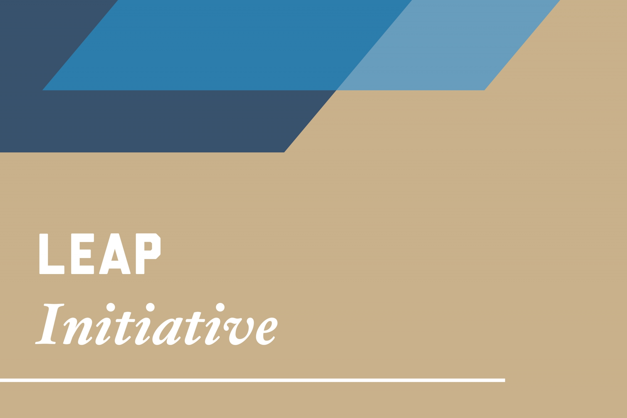Graphic: LEAP Initiative