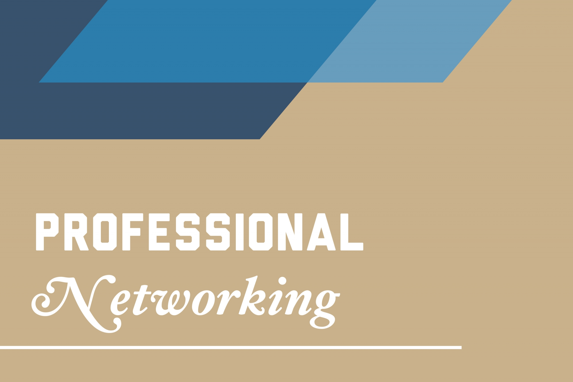 Graphic: Professional networking